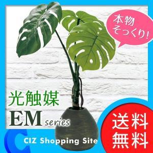 フェイクグリーン 光触媒 観葉植物 おしゃれ インテリア モンステラ|ciz