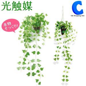 光触媒 観葉植物 おしゃれ 壁掛け アイビー 人工観葉植物 ...