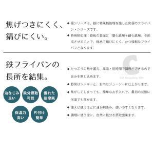 リバーライト フライパン 28cm 極 JAPAN 鉄フライパン 鉄 日本製 極JAPANシリーズ 台所 キッチン 調理器具|ciz|03