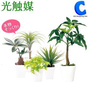 フェイクグリーン 光触媒 人工観葉植物 造花 インテリア リアル 消臭 抗菌 ミニグリーン
