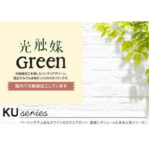フェイクグリーン 観葉植物 光触媒 人工観葉植物 大型 おしゃれ シュガーバイン パキラ など 6種類 リアル ciz 02