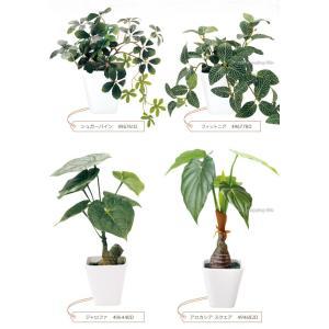 フェイクグリーン 観葉植物 光触媒 人工観葉植物 大型 おしゃれ シュガーバイン パキラ など 6種類 リアル ciz 03