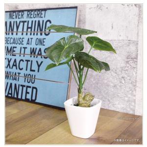 フェイクグリーン 観葉植物 光触媒 人工観葉植物 大型 おしゃれ シュガーバイン パキラ など 6種類 リアル ciz 05