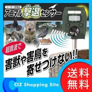 ソーラー充電式 超音波発生器 害獣対策 害獣駆除 アニマル撃退センサー コウモリ 犬 猫 ネズミ 鳥 (送料無料)|ciz
