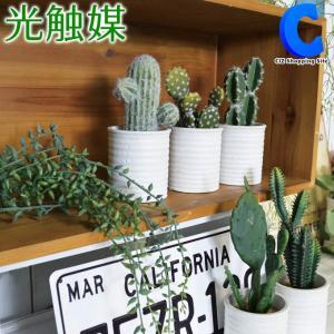 フェイクグリーン 光触媒 観葉植物 大型 おしゃれ インテリア 多肉植物 サボテン 5種類|ciz