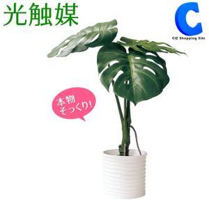 フェイクグリーン 光触媒 観葉植物 大型 おしゃれ インテリア モンステラ|ciz