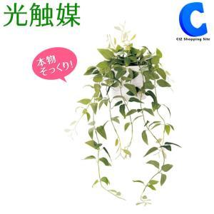 フェイクグリーン 観葉植物 光触媒 人工観葉植物 壁掛け クレマチス TRL 498864D|ciz