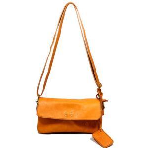 8016 フェス レディース お財布ショルダー カウレザー 牛革 本革 斜め掛け ポーチ  財布 ショルダーバッグ 正規品 /fes bag|ck-custom
