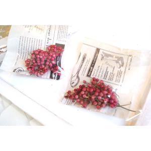 花材 ペッパーベリー ピンク|clair-accesory