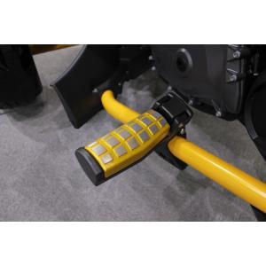 BRP Can-Am SPYDER F3 クラリス製 ダイキャスト ステップ イエローアルマイト  2個セット(受注生産) claris-shop