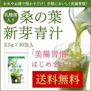 青汁 国産 乳酸菌入 桑の葉 新芽青汁 30包入 乳酸菌 ラ...