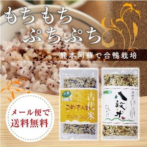 すべて阿蘇の麓で栽培 4種類のお米ですごい ぷちぷち感
