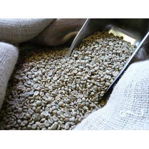 アラビカ コーヒー生豆 ブラジル サントス Brazil Santos NO2 SC17/18 200g クラシカルコーヒーロースター|classicalcoffee
