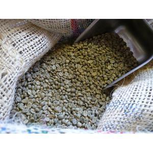 アラビカコーヒー 生豆 コロンビア エクセルソ Colombia Exelso 200g  クラシカルコーヒーロースター|classicalcoffee