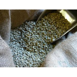 アラビカコーヒー生豆 グァテマラ SHB Guatemala SHB 500g  クラシカルコーヒーロースター|classicalcoffee