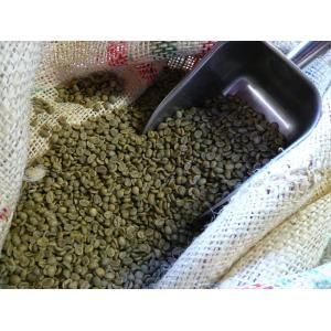 アラビカコーヒー生豆 コロンビア スプレモ 500g Colombia Supremo 500g  クラシカルコーヒーロースター|classicalcoffee