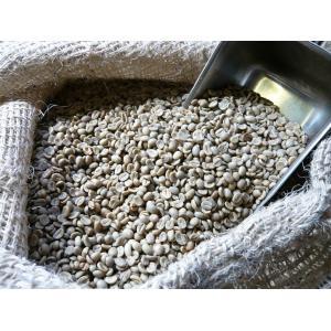 アラビカ コーヒー生豆 タンザニア AA(キリマンジャロ)Tanzania-AA 200gクラシカルコーヒーロースター|classicalcoffee