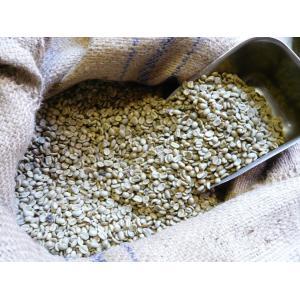 アラビカコーヒー生豆 メキシコ アルツラ Mexico Altura 200g クラシカルコーヒーロースター|classicalcoffee