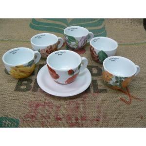 ANCAP社 ローズ カプチーノカップ&ソーサー 約200cc 6種類セット classicalcoffee