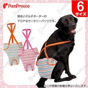 【犬用生理用パンツ】中型犬用 ダイパー型サニタリーパンツ ボーダーレインボー 6号(2814)|classy