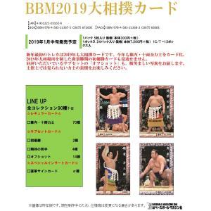 【お取り寄せ】 BBM2019大相撲カード 1BOX|clearfile|02