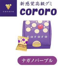 UHA味覚糖 高級グミ コロロ ナガノパープル味 お歳暮 クリスマス ギフト climb-store