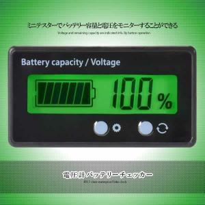 バッテリーモニター バッテリーチェッカー 電圧計 残量計 LCD表示 埋め込みタイプ 前面2ボタン ...