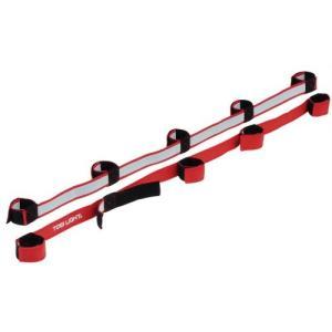 トーエイライト トーエイライト むかでロープ DX5(赤) 5人用(2本1組) B-3384R