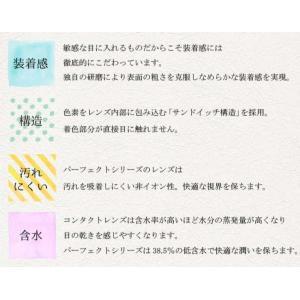 ドルチェ パーフェクトワンデー 1箱6枚 コスプレ カラコン カラーコンタクトレンズ clover-eyes 05