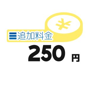 《追加料金・250円分》離島の追加料金等【250円】 clover8888