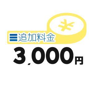 《追加料金・3千円分》離島の追加料金等【3000円】 clover8888