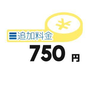 《追加料金・750円分》離島の追加料金等【750円】 clover8888