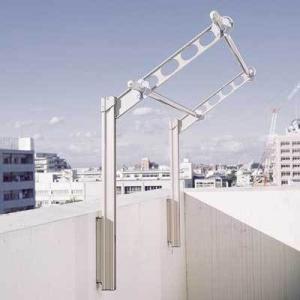杉田エース ACE 物干し金物 スカイクリーンAPL型 550 (S・ST・DB) 1組2本|clubestashop