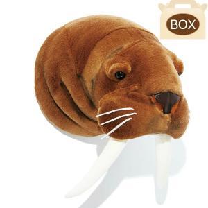 WILD&SOFT(ワイルドアンドソフト) アニマルヘッド セイウチ 専用ボックス入り BIBIB&Co(ビビブアンドコー) Animal Head|clubestashop