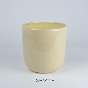 D&M(ディーアンドエム) プライム Lオーキッドポット D17 植木鉢/鉢カバー AAR4446|clubestashop