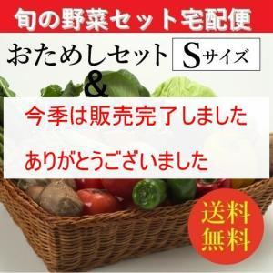 お試し旬の野菜&加工食材:詰合せセット【Sセット(7〜8種類)】「1〜2人向き」宅配サービス【送料無料】