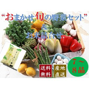 おまかせ旬の野菜【7〜8種類】& 乾式無洗米 セット 宅配サービス【送料無料】