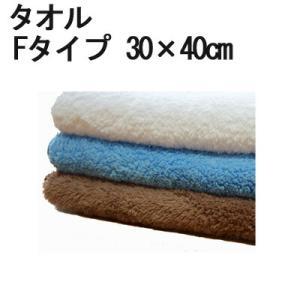 マイクロファイバー ミニタオル 「ふわふわタイプ」 30cm×40cm 超極細繊維 無地 かばん 小さい|cntr