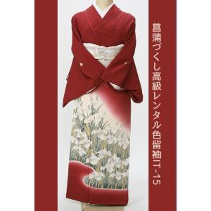 レンタル衣裳色留袖菖蒲づくしレンタル色留袖留袖正絹衣装,,親族,,草履バッグ付お祝い 祝賀 褒章 褒賞 叙勲 結納|coco-uu-renntaru