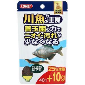 イトスイ 川魚の主食 納豆菌 40g 2390110 ◇◇