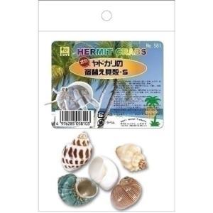 三晃商会 オカヤドカリの宿替え貝殻 Sの関連商品2