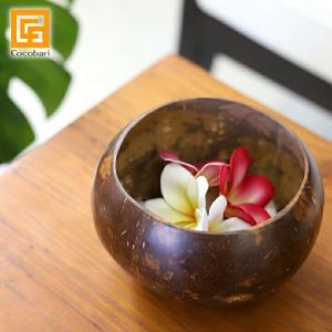 ココナッツのボウル 椰子 バリ サロン スパ用品 おしゃれ バリ風 インテリア バリ雑貨|cocobari