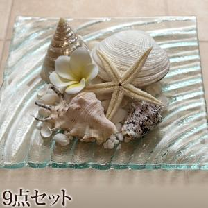 貝殻のリゾートコーデ9点セット 貝殻(5種類)(ヒトデ、ナチュラルストーン、プルメリア、ガラスプレート)   おしゃれ 海 ディスプレイ バリ風  南国|cocobari
