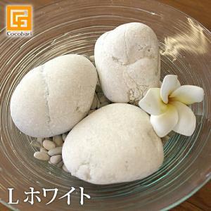 ナチュラルストーン(L)ホワイト(3個)化粧石 飾り石 観葉植物 マルチング 大きい 大きめ 装飾用 白い石 白色 ストーンペインティング バリ雑貨 ココバリ|cocobari