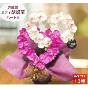 ミディサイズ胡蝶蘭がハート型で登場。豪華なイメージの胡蝶蘭でも、時間をかけて仕上げたハート型ならかわ...