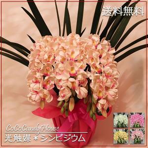 光触媒 シンビジウム 蘭  Mサイズ 3本立 送料無料 造花 ギフト 選べる花色 ココキャンディーハウス
