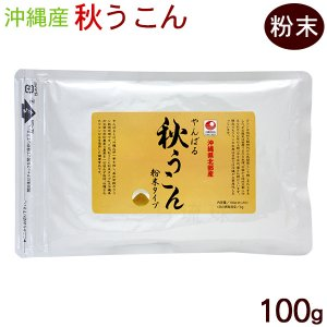沖縄産 やんばる 秋うこん 100g 粉末タイプ(袋) 秋ウコン ターメリック クルクミン|cocochir