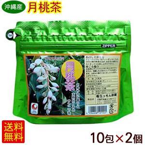 月桃茶 ティーパック(2g×10P)×2個    (メール便で送料無料) cocochir