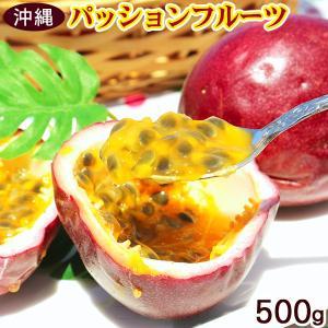 パッションフルーツ 約500g(5〜10玉)沖縄産 ご自宅用...
