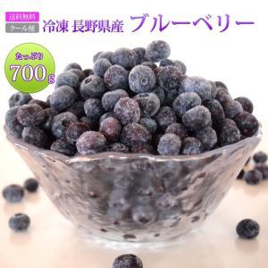 ブルーベリー 国産 長野県産 冷凍 フルーツ たっぷり 大容量 700g